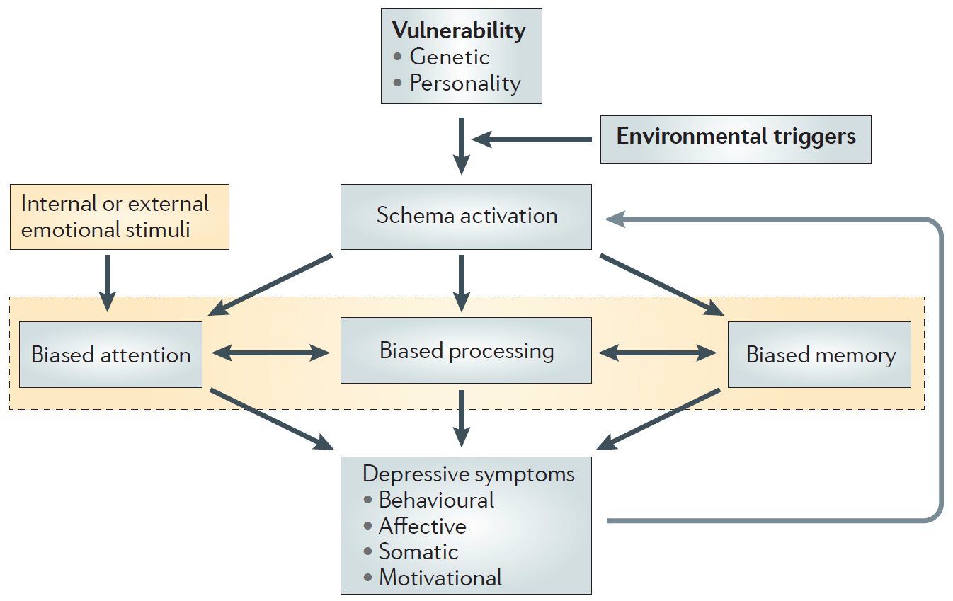 Information processing in the cognitive model of depression illustrates cognitive therapy neural networks, showing feedback loops